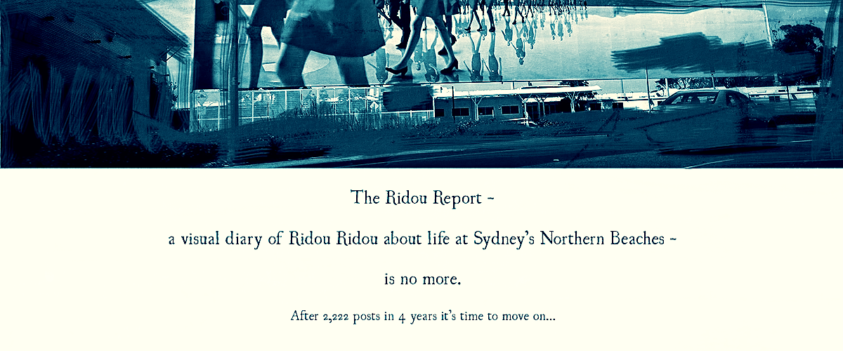 The Ridou Report