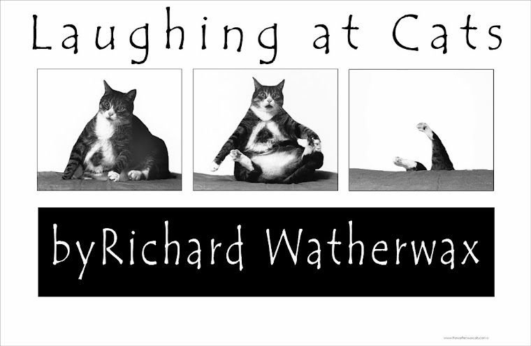 Watherwax Cats