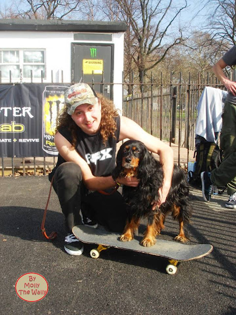 Molly The Wally goes skateboarding.