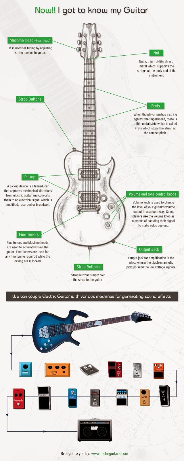 Niche-Guitars