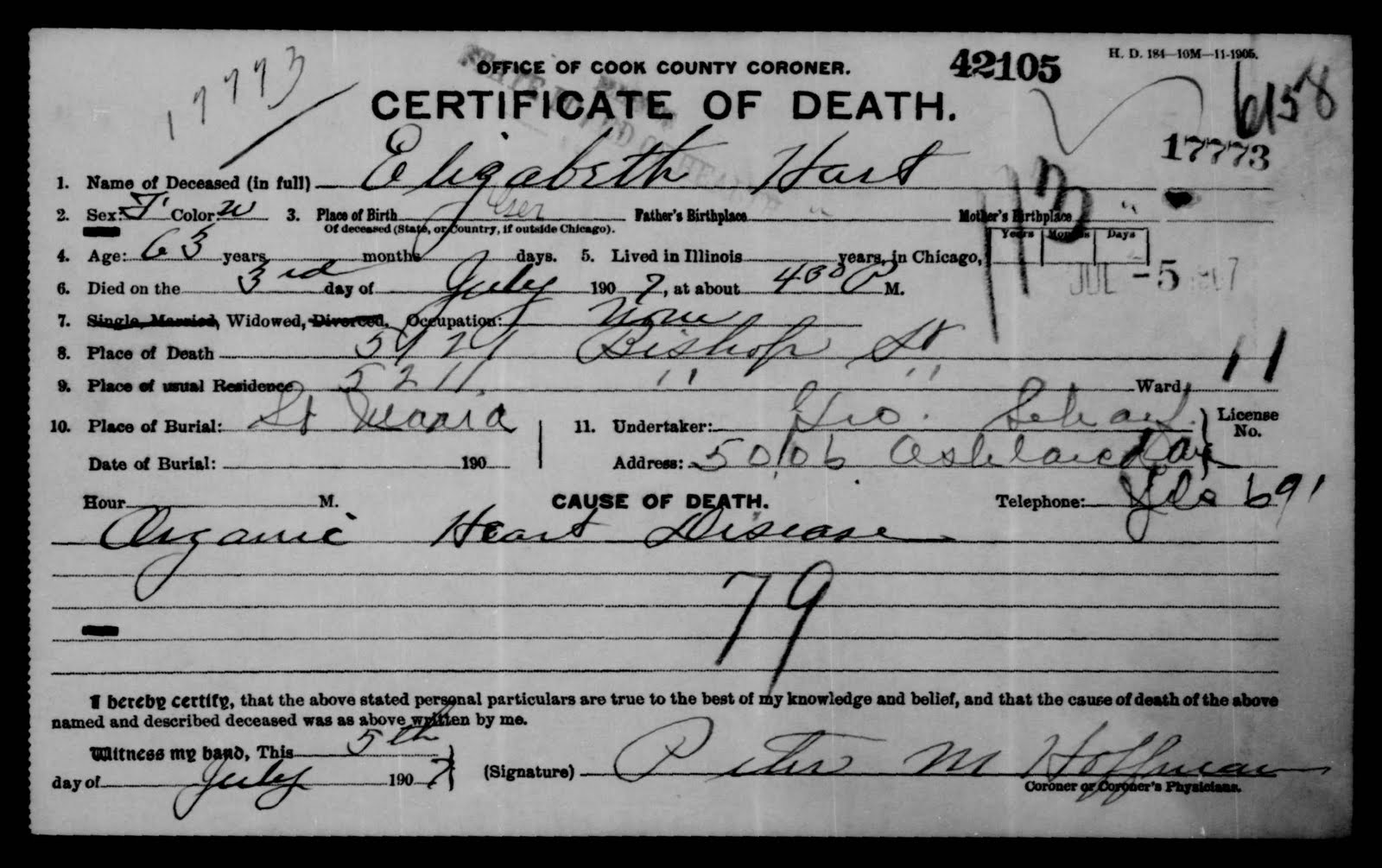 Chicagogenealogy research insights from study and serendipity death certificate image from familysearchs illinois cook county deaths 1878 1922 1betcityfo Image collections