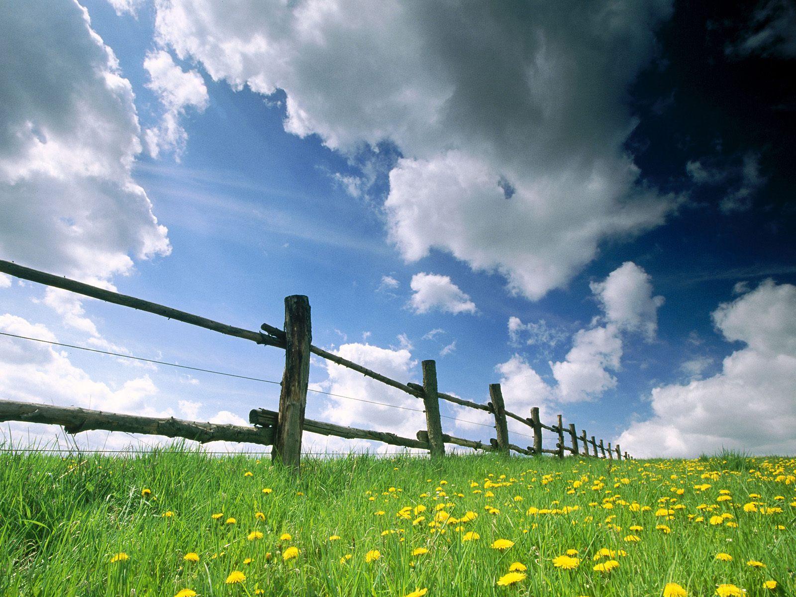 http://3.bp.blogspot.com/-NObbVgle_kM/T2SRIcOD4SI/AAAAAAAAAPE/aEmVX7PhsXk/s1600/natural%2Bwallpaper-1.jpg