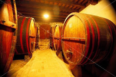 My VISIT to The CELLARS of CASTELLO VERRAZZANO
