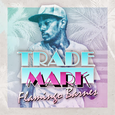 Trademark Da Skydiver - Flamingo Barnes Cover