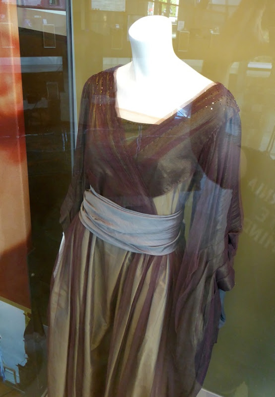 The Danish Girl Lili Elbe costume