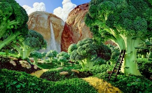 15-Broccoli-Forest-Foodscapes-British-Photographer-Carl-Warner-Food- Vegetables-Fruit-Meat-www-designstack-co