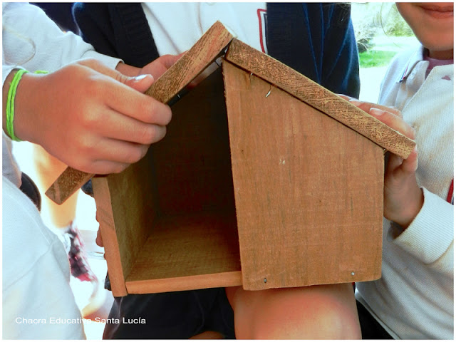 Alumnos de la Chacra construyeron casitas para que las aves aniden - Chacra Educativa Santa Lucía