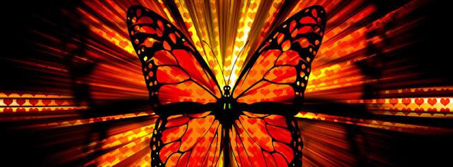 Butterfly wallpaper kapak resimleriblogspotcom - Facebok zaman t�neli i�in kapak ar�ivi