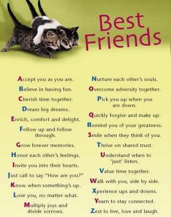 friend quotes today loves