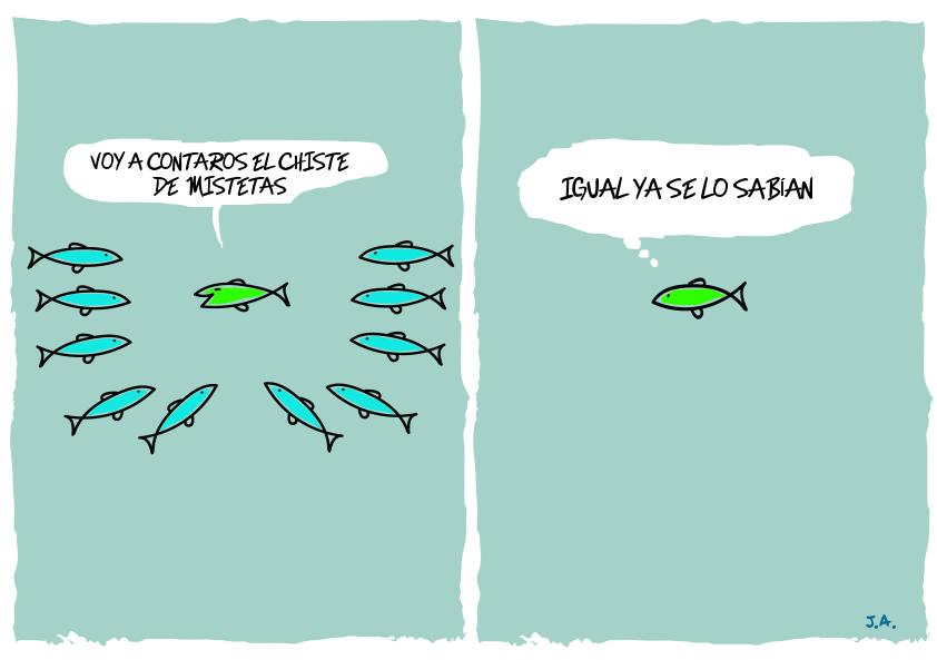 Fotos graciosas de peces Imágenes graciosas y divertidas - imagenes chistosas de pescados