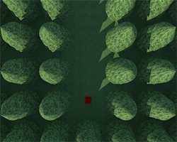 Solucion Escape from the Strange Forest Ayuda
