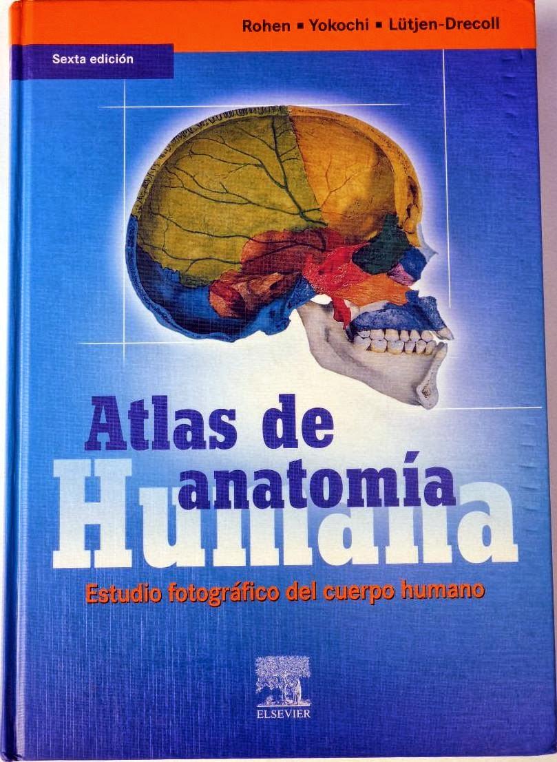 APUNTES DE MEDICINA UAGRM: Atlas de anatomía humana - Yokochi - 6 ...