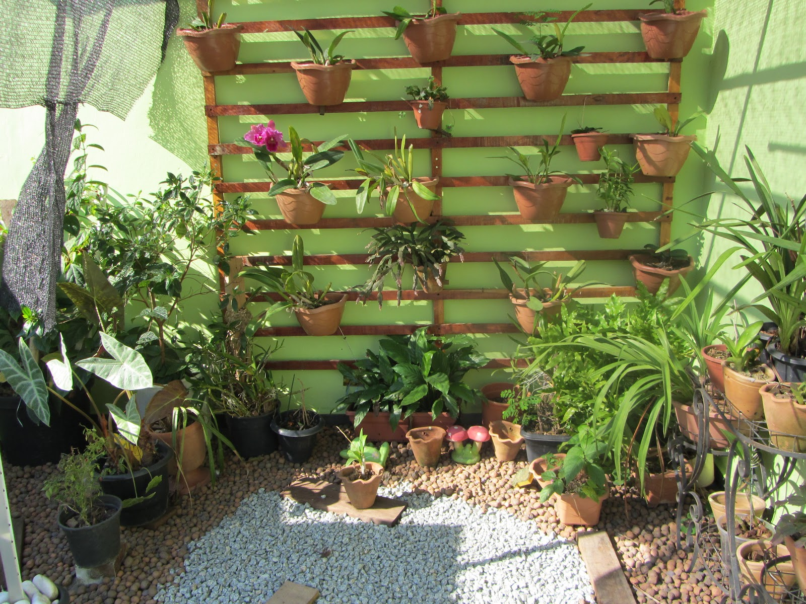 ideias para decorar meu jardim: -jardim-flores-vasos-equipamentos-para-dicas-6-jardim-de-inverno.jpg