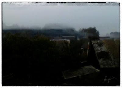 Krysiakowo - mgła w Kleszczelach