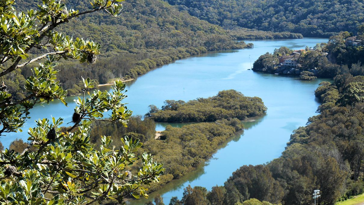 Our Walks: 2015 | Excursion ideas | Sydney and Blue Mountains | day ...