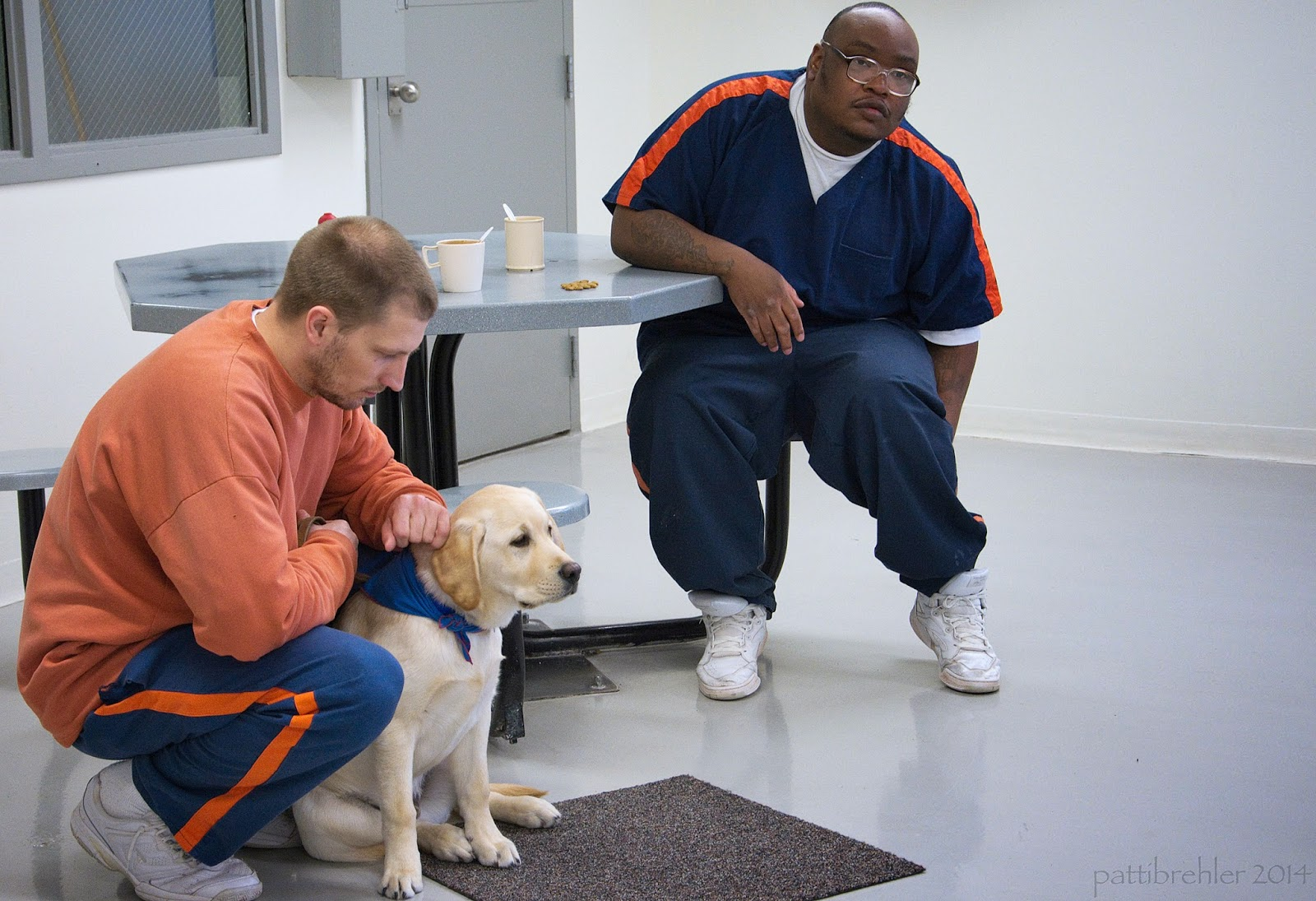 A yellow lab puppy is sitting on a brown carpet mat between the knees of a man who is squatting down behind him. The man is wearing an orange long sleeved t-shirt and blue prison pants with an orange stripe. He is touching the puppy's head with his left hand and his right arm is resting across his right knee. He is looking at the puppy. A second man is sitting on a stool attached to an octogon shaped table. He is also wearing the prison blue uniform. He is african american and is wearing glasses. HIs right forearm is resting on the table and he is reaching behind his left leg with his left hand.