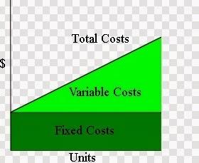 Biaya Variabel (Variable Cost) adalah