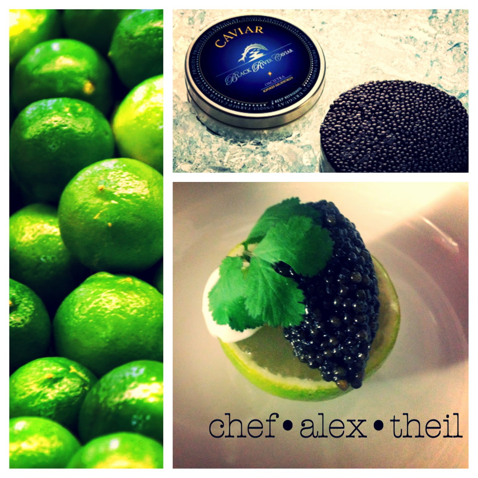 Chef Alex Theil Partner von Klaus Piber Mercado Latin Inspired Market Cuisine Wien Stubenring 18 09 Caviar unze gramm Uruguay Limette Crema Agria Koriander Osetra Citrus