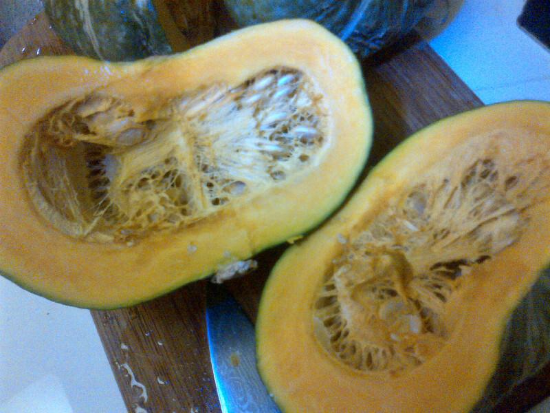 how to tell when spaghetti squash is ripe to pick