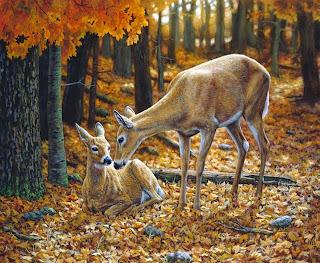 paisajes-con-cascadas-y-animales