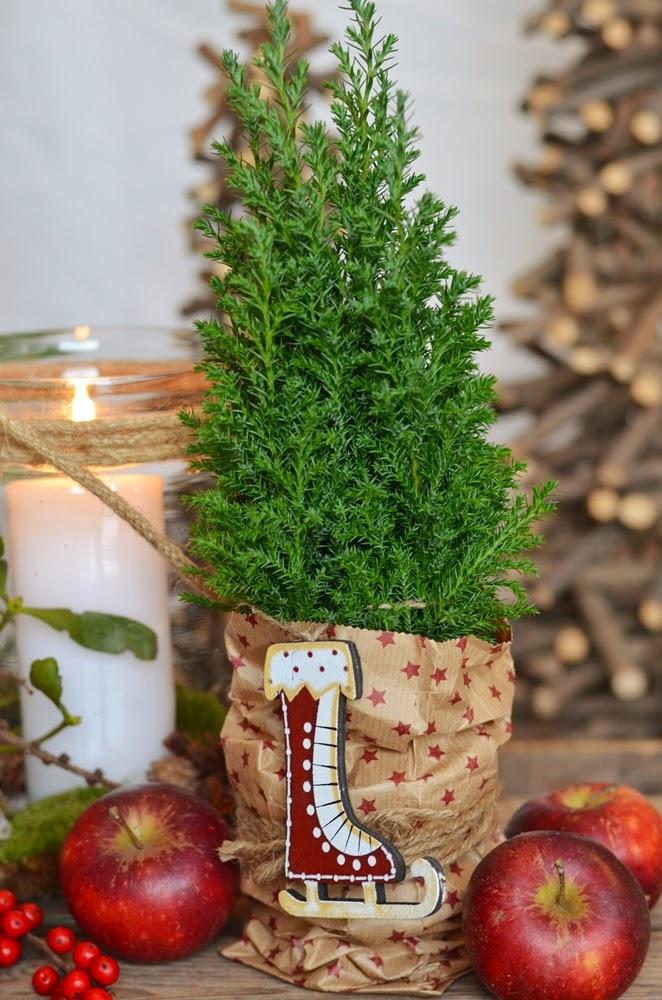 jul, plantering, planteringar, inspiration, 2014, julblommor, christmas, flower, flowers, hyacint, vit, hjärta, orkidé, ros, rosor, röd, mossa, kotte, kottar