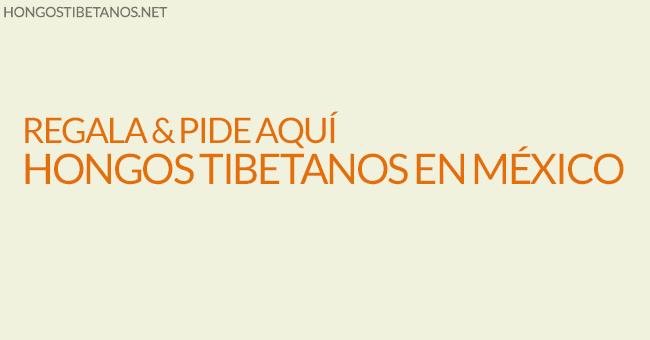 Hongos Tibetanos en México