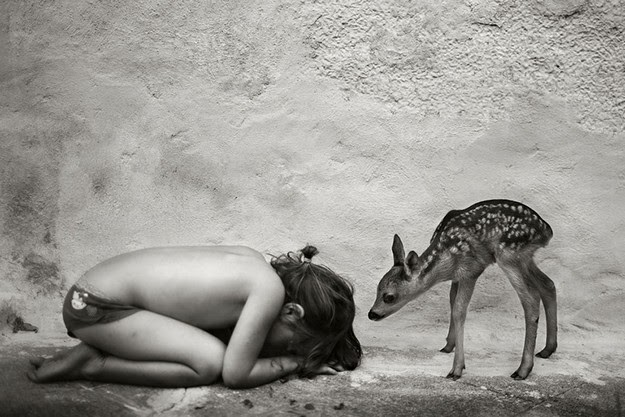 photographer Alain Laboile