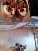 毎朝の恒例行事、楽しく弁当チェックなんてしていたのんきなコナンでした。