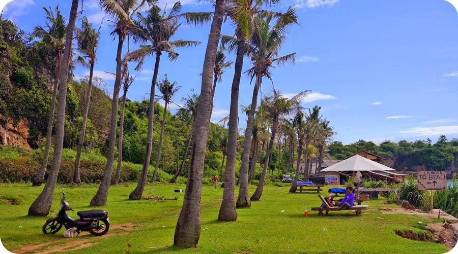 Nyiur Melambai Di Pantai Balangan Bali