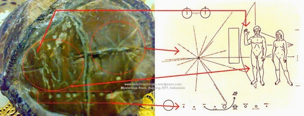 UFO mania: Alien Star Map Found In Kupang, Indonesia?