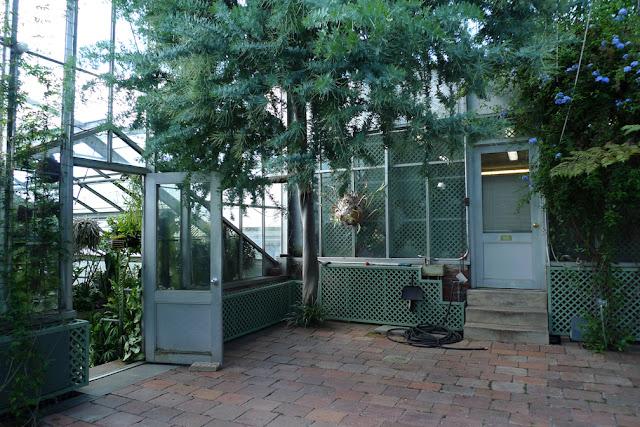 Wave Hill garden conservatory © 2012 Amber Schley Iragui