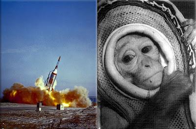10 Hewan yang Pernah Jadi Astronot