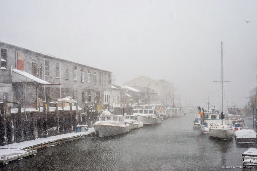 Portland, Maine January 2015 blizzard snow at custom house wharf photo by Corey Templeton