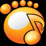 GOM Audio Media Player 2.0.7 + Gom Audio Skin