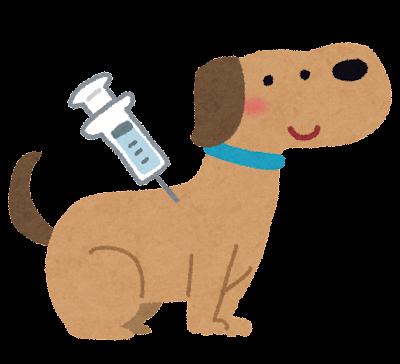 犬の予防注射のイラスト
