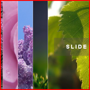 Weebly Image Accordion CSS3