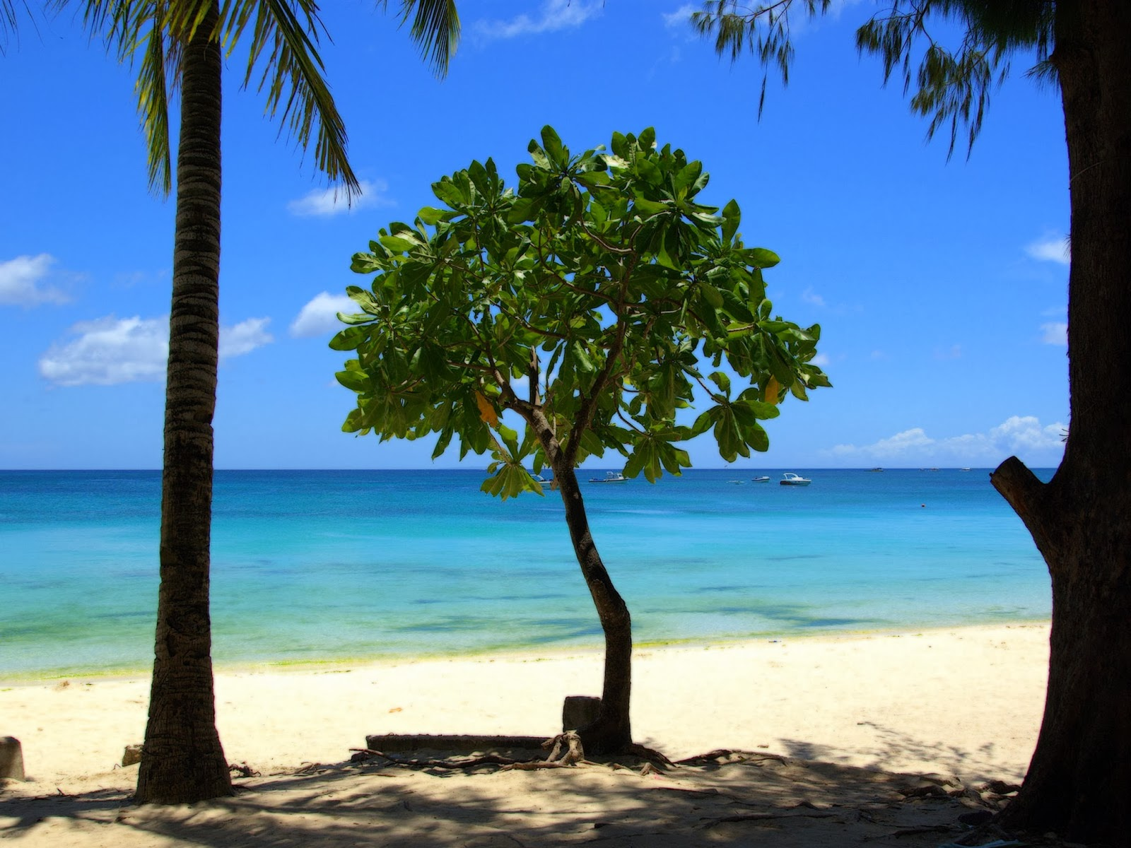 Tropical Beach Image Beautiful Nature Images And Wallpapers
