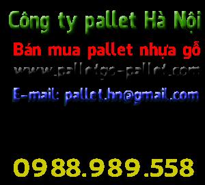 Pallet ở tại Hà Nội