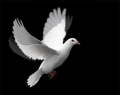 Open Heavens, Open Heavens Devotional, Daily Devotion, Key Point,