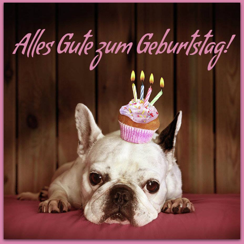 ... Gute zum Geburtstag! - ツ GeburtstagsBilder & Geburtstagsgrüße ツ