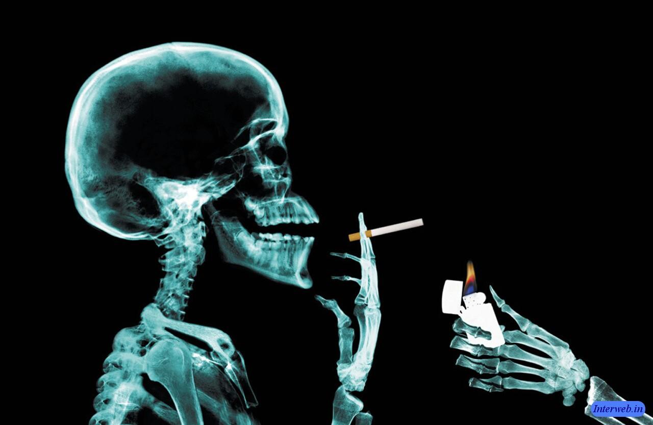 http://3.bp.blogspot.com/-NUmd4344f6A/ThdMoAoBfQI/AAAAAAAACek/e_KINsStDVA/s1600/dangerous-3d-horror-wallpapers-dangerous.jpg
