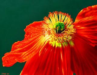 Cuadros Modernos Flores Grandes Dimensiones