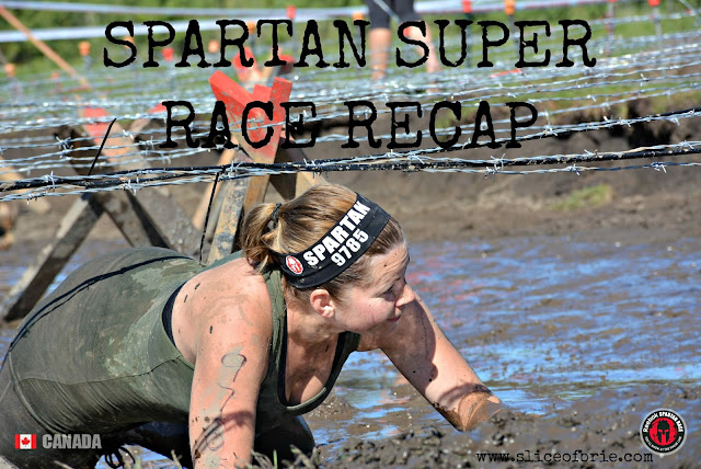 Spartan Super Race Recap 2015