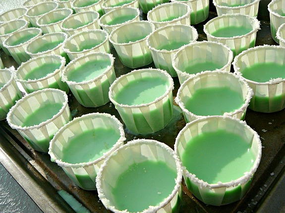 Mostly Food and Crafts: Margarita Jello Shots