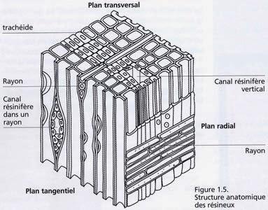 ixarchitecture  maisons individuelles et construction bois