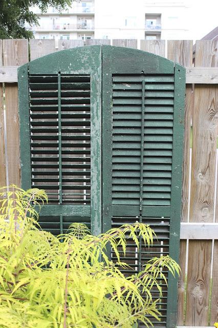 old-shutters-garden