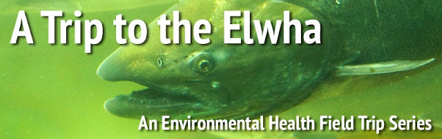 A Trip to the Elwha: Part 1, The Journey Begins