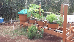 Aquaponics