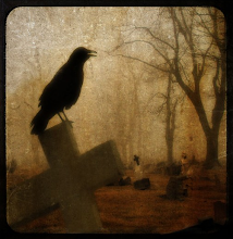 Crow caws into the silence...