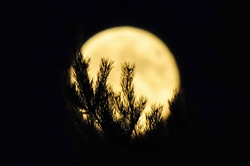 Vollmond am 15.07.2011...